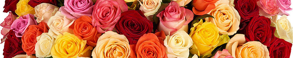 Акция Букет цветов 101 роза за 4444руб.